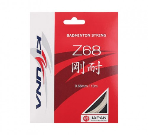 Kizuna Z68 Gauge